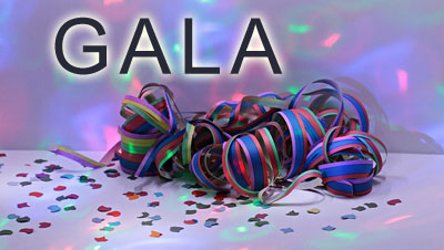 Extra Fee to attend the Gala IF YOU ARE NOT A $300-level patron or above or paying for a thirty-two-dollar ticket - Date: 02/22/20 - Festivities begin at 6:30 p.m.